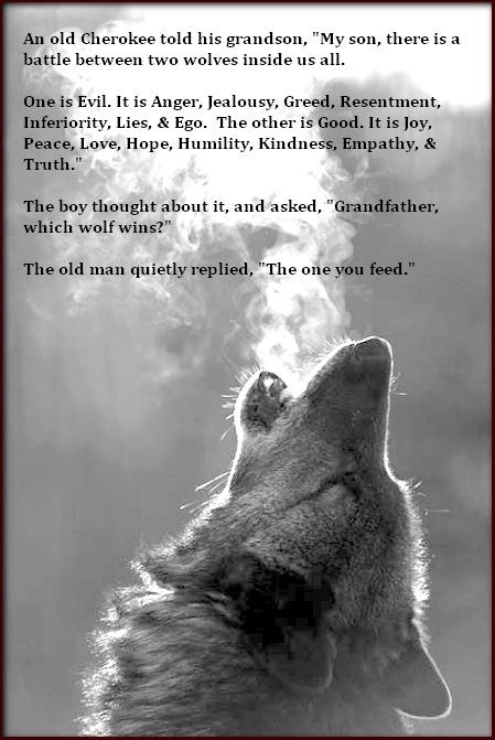 Native American Wolf Quotes. QuotesGram