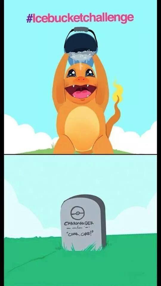 Pokemon Memes 17