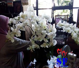 toko-bunga-kayoon-surabaya-jual-bunga-anggrek-online