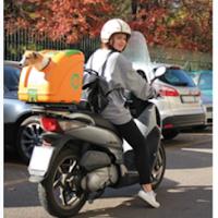 Pow, Pet On Wheels transport en chien en moto