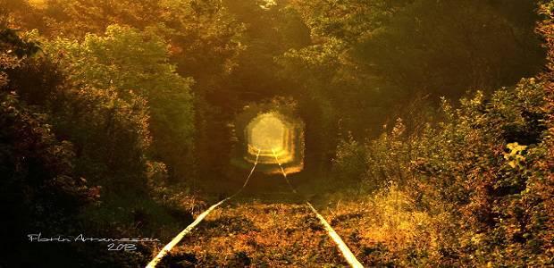 Tunelul dragostei din Obreja Romania pe timp de toamna
