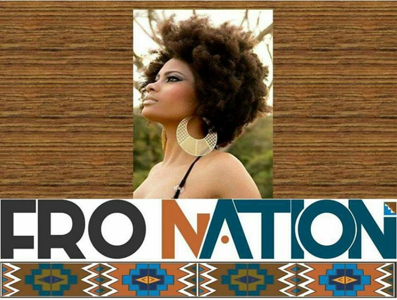 Image result for Fro Nation Natural Hair Salon