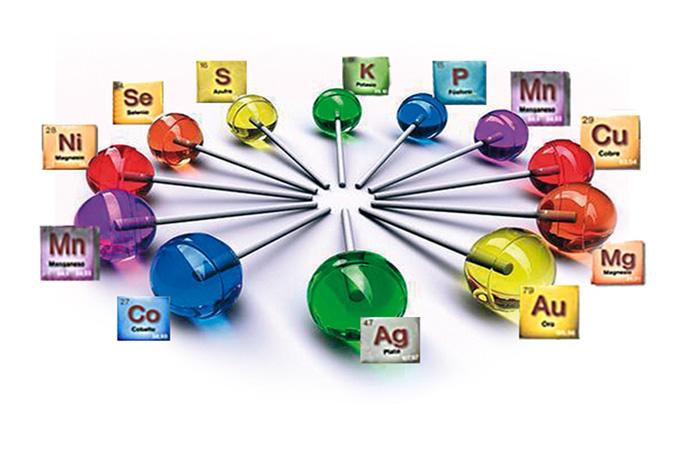 Qu mica y salud elementos minerales hierro zinc cobre yodo selenio fluoruro cromo - Alimentos ricos en magnesio y zinc ...