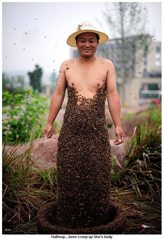 Honey Bee Nude 114