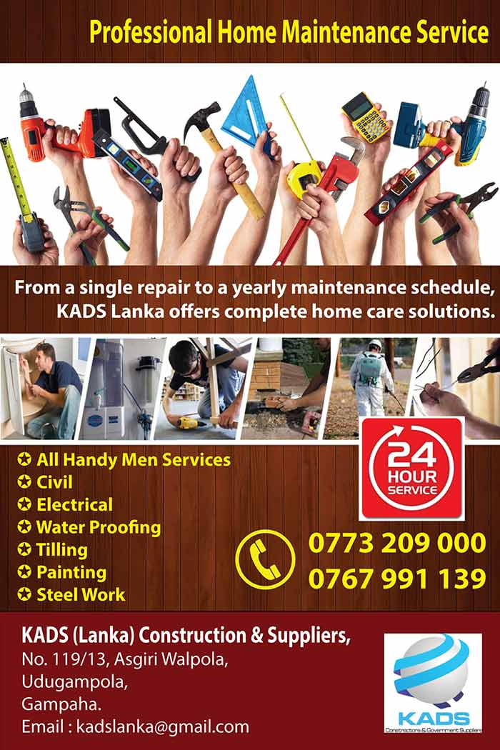 Professional Home Maintenance Service.
