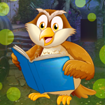 Games4King Owl Student Escape