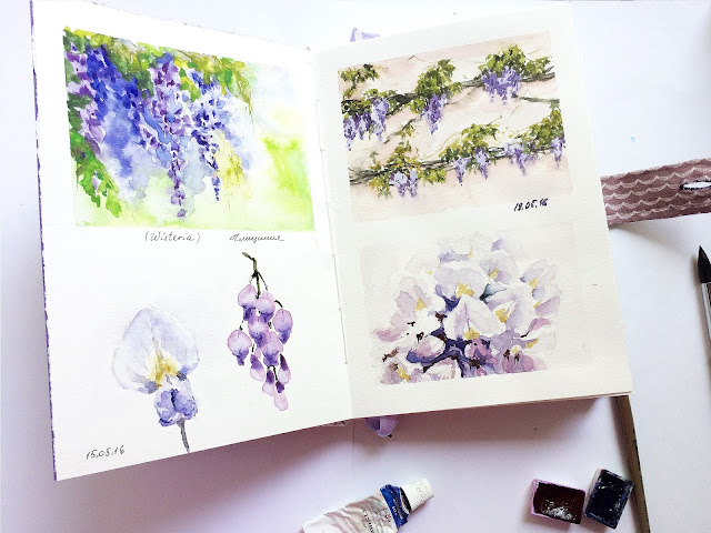 Sketchbuk akvarel gliciniya visteriya | Inna Yakusheva's blog
