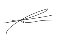 theBlockBay signature