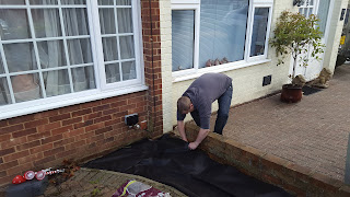 Flyfour working hard in the garden putting down the weed control fabric