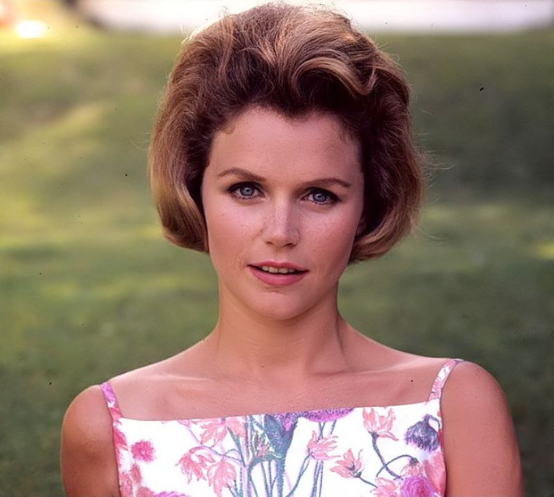 lee remick movieslee remick grave, lee remick height, lee remick death, lee remick, lee remick go betweens, lee remick montgomery clift movies, lee remick movies, lee remick imdb, lee remick net worth, lee remick last photo, lee remick daughter, lee remick find a grave, lee remick images, lee remick wikipedia, lee remick wiki, lee remick actress, lee remick feet, lee remick bio, lee remick films, lee remick cause of death