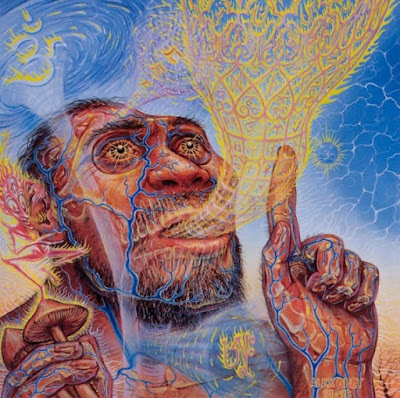 A Critique of Terence McKenna's 'Stoned Ape Theory'