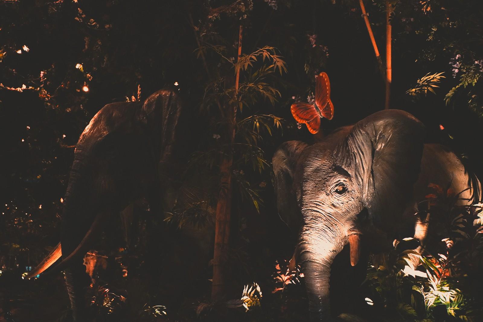 elefantes na selva escura
