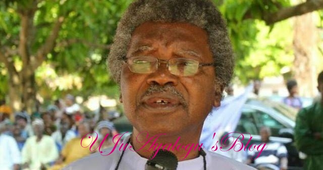 Biafra: Why Buhari won't look back in crushing Nnamdi Kanu, IPOB – Paul Unongo