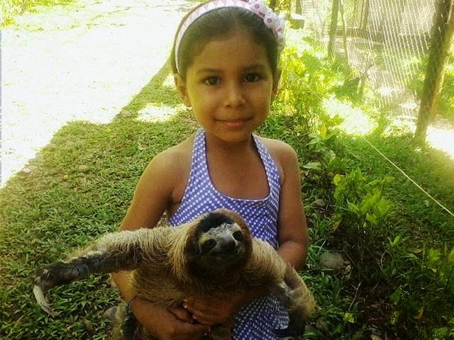 school girl & sloth / perezoso y niña