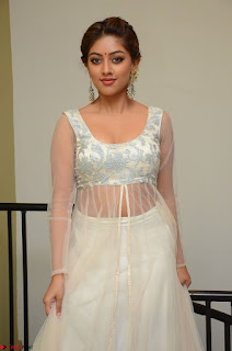 Anu Emmanuel in a Transparent White Choli Cream Ghagra Stunning Pics 127.JPG