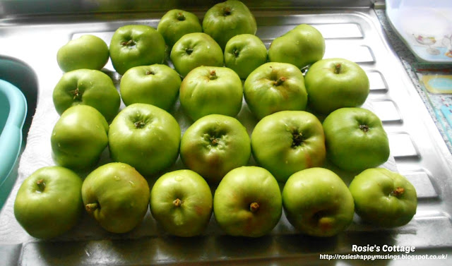 The freshly harvested apples were brought indoors and thoroughly washed and left sitting on kitchen towel to allow them to dry.