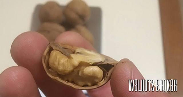 Грецкий орех Кочерженко купить в Украине, 0985674877, 0957351986