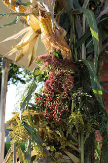 Display_at_Harvest_Days_2015
