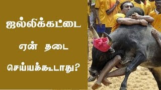 Why Jallikkattu should not be banned?