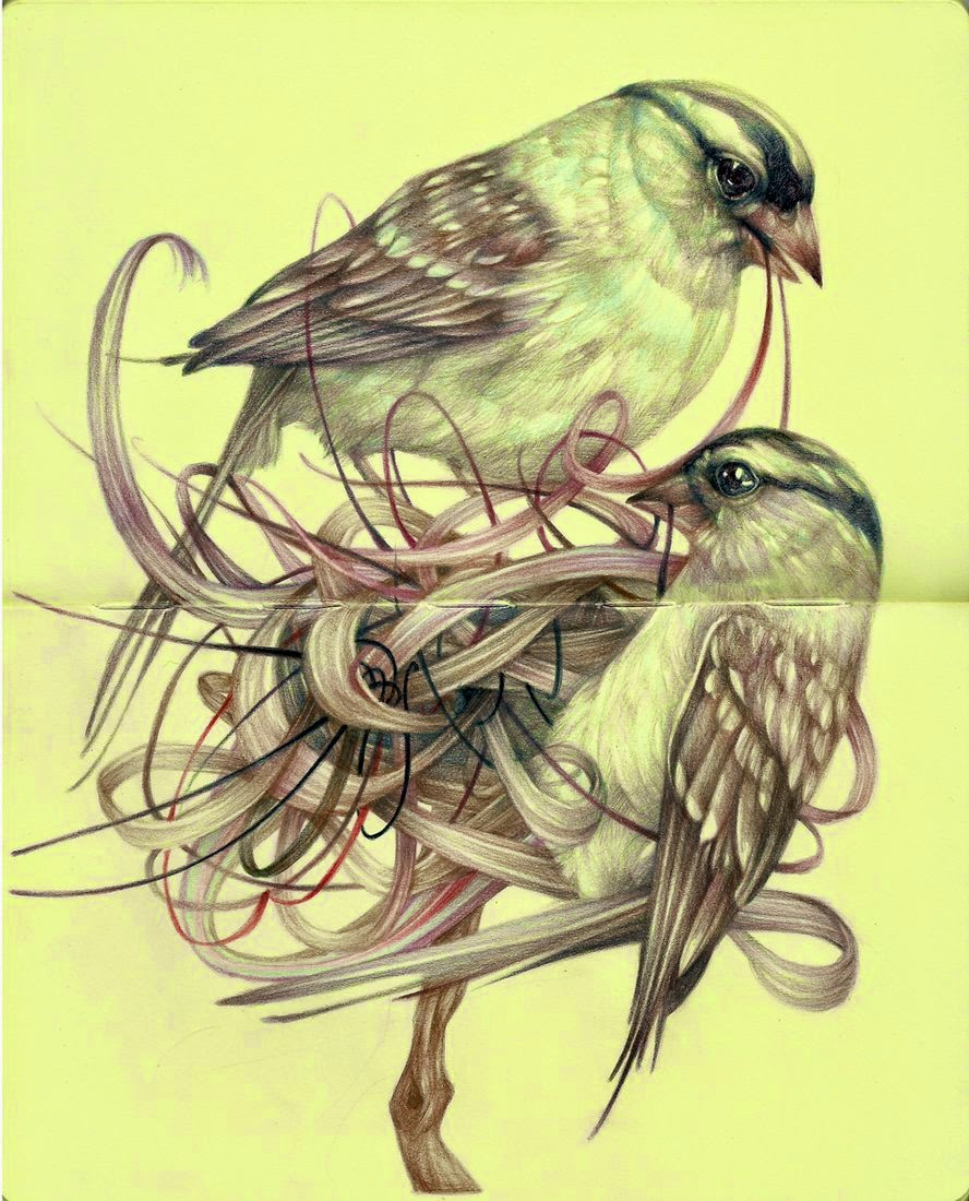 11-Marco-Mazzoni-Surreal-Animal-Drawings-www-designstack-co