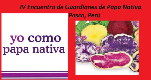 IV Encuentro de Guardianes de Papa Nativa — Pasco, Perú