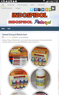 www.indospidol.com dilhat dengan tablet