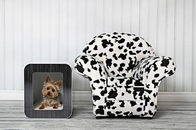 Decoración con un sillón de vaca