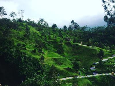 Tempat Wisata Baru Cikaret Bogor Yang Sedang Ngehits