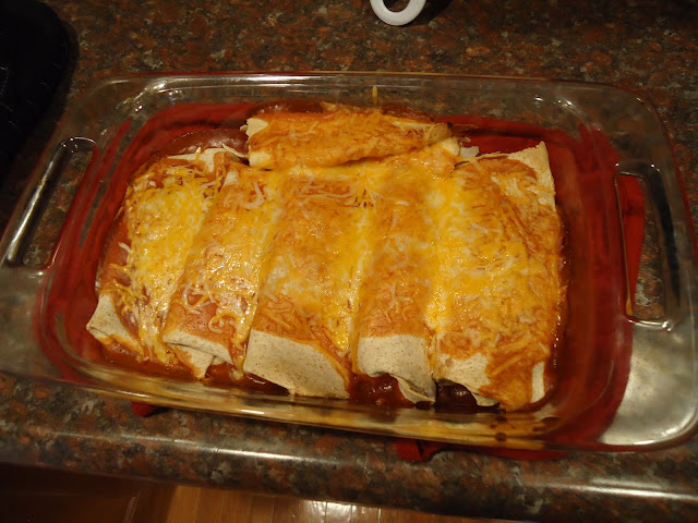 Salsa Chicken Enchiladas, chicken enchiladas, dinner recipe