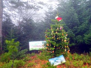 Olympus Mountain Activiτιes : Δημιουργοί υπέροχων αναμνήσεων!