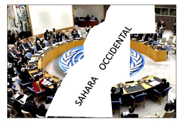 Instituto Español de Estudios Estratégicos analiza la situación en el Sáhara