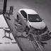 Kereta rosak disangka perbuatan jenayah rupanya diserang anjing liar