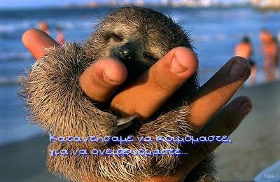 λόγια σοφά αγάπης-ομορφα λογια-omorfa logia-στιχοι αγαπης-eikones agaphs-μικρά ζωάκια