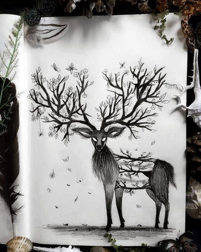 02-The-Stag-Lihnida-Dimeska-www-designstack-co