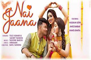 Nai Jaana Lyrics | Tulsi Kumar | Sachet Tandon Poster