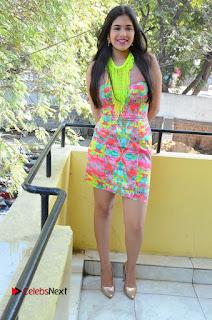 Telugu Actress Prasanna Stills in Short Dress at Inkenti Nuvve Cheppu Press Meet Stills  0186.JPG