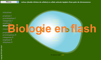 Biologie en flash