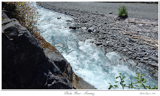 Elwha River: Foaming