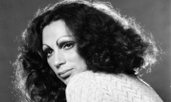 >>> HOLLY WOODLAWN