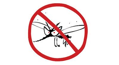 Cara Mencegah dan Mengusir Nyamuk Bandel di Sekitar Anda
