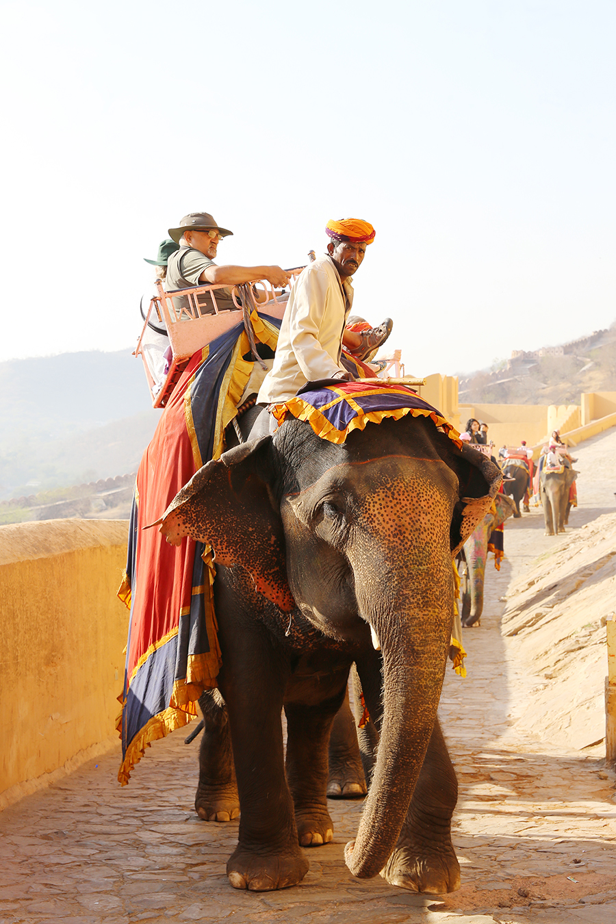 Planning a trip to Jaipur, India? You can't miss Amber Fort (aka Amer Fort), one of Rajasthan's great fortress palaces. Here's everything you need to know before you go.