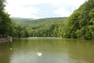 Imagen del lago Parz
