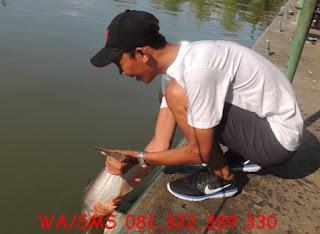 Master Essen Ikan Patin