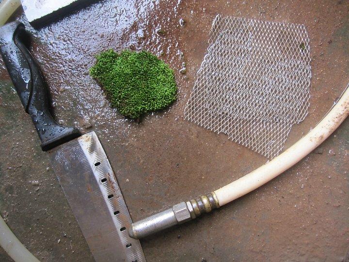 kinh nghiệm xử lý fiss thủy sinh - chuẩn bị công cụ