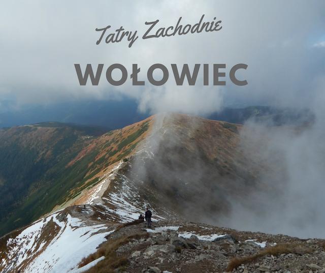 Tatry Dolina Chochołowska