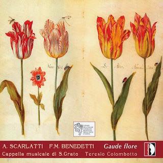 Scarlatti and Benedetti: Gaude flore