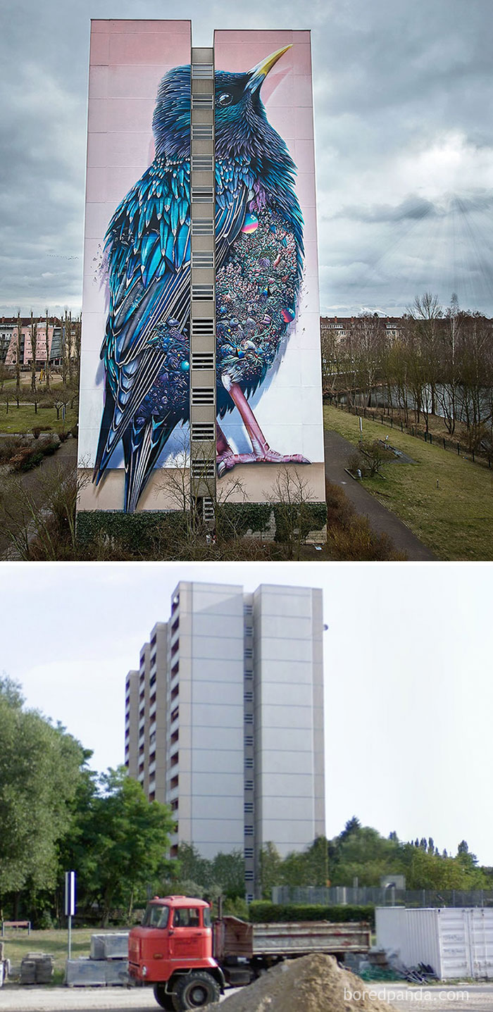 10+ Incredible Before & After Street Art Transformations That'll Make You Say Wow - Giant Starling Mural In Berlin