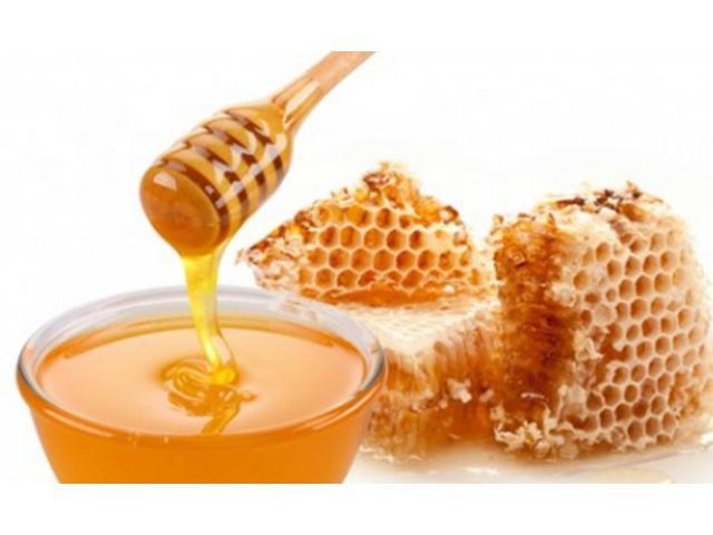 عسل النحل وأهميته في علاج الجروح