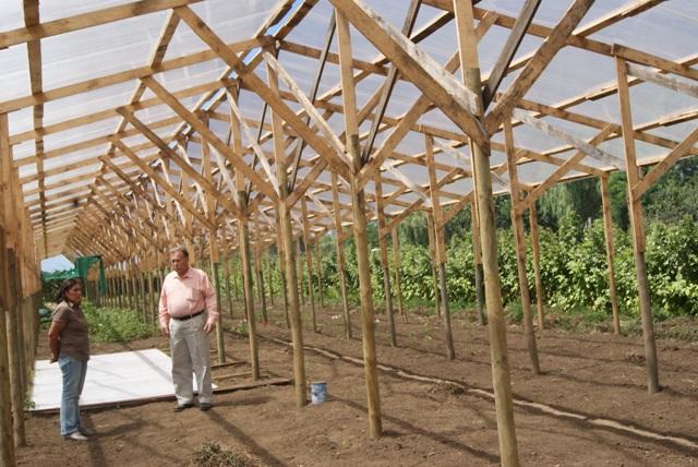 cuanto cuesta un invernadero de madera