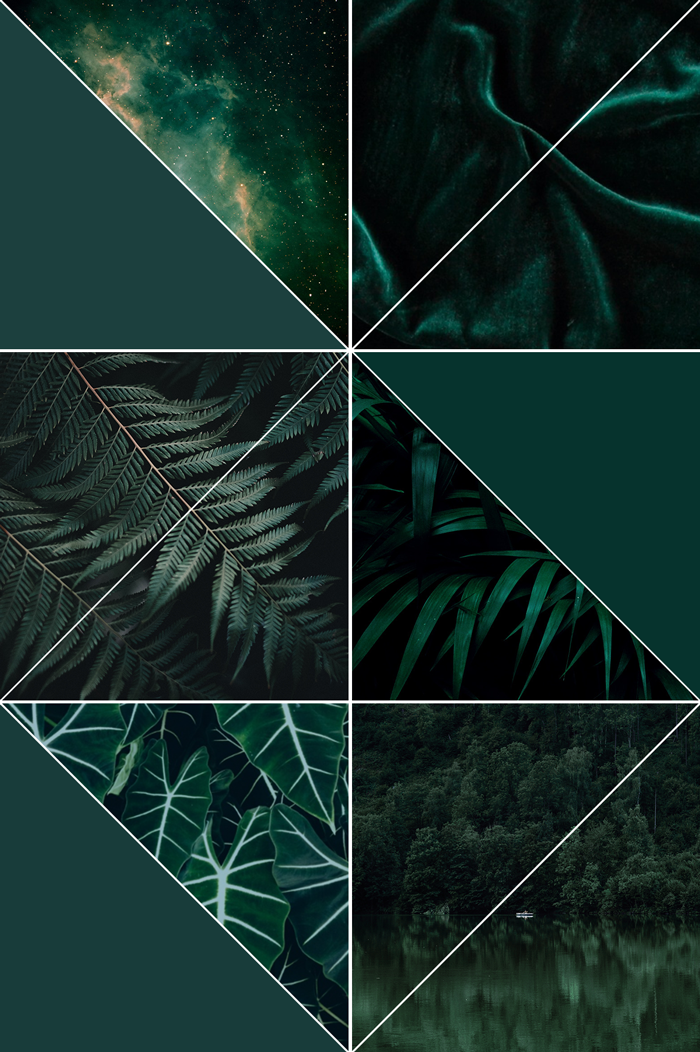 nature photography, hunter green, forest green, paint color trend, home decor, interior design, nebula, velvet,